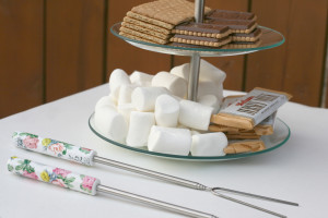 End of summer s'mores bar